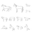 galloping and farm icon vector image