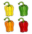 orange yellow green red paprika bell pepper or vector image