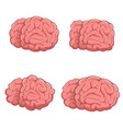 set brains vector image vector image