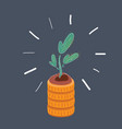 stack money and plant on vector image vector image