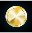 blank gold medal token of vector image vector image