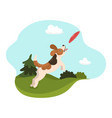 dog catches plate in meadow graphics vector image
