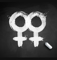 female gender symbol of homosexuality vector image vector image