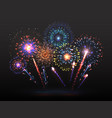 fireworks background firework petard exploding in vector image vector image