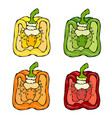 half of orange yellow green red paprika bell vector image