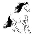 horse line art 02 vector image vector image