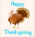 thanksgiving card template with wild turkey vector image