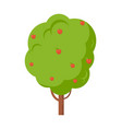 apple tree full of fruit isolated cartoon icon vector image vector image