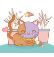 cute cat animal with plants and fish vector image