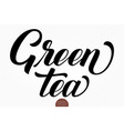 hand drawn lettering green tea elegant vector image vector image