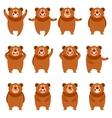 set flat bear icons vector image vector image