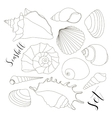Set of isolated hand drawn seashell icons vector image vector image