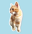 sticker cat sitting looking side vector image vector image
