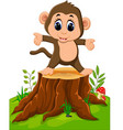 cartoon happy monkey dancing on tree stump vector image vector image