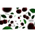 Falling black cherries elements realistic cherry