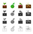 garden rural production and other web icon in vector image vector image
