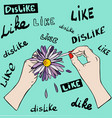 large lilac daisy in female hands fingers tear vector image