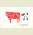 stock beef cuts diagram vector image