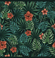 beautiful tropical floral seamless pattern vector image vector image