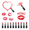 colorful lipstick collection isolated white vector image