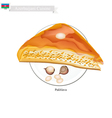 Pakhlava or Azerbaijani Cheese Pastry with Syrup vector image vector image