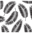 Palm Leaf Frame Background vector image