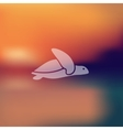 turtle icon on blurred background vector image
