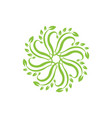 beautiful and colorful circle flower logo round vector image vector image