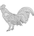 coloring book page with rooster vector image vector image