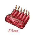 meat ribs of pork beef or lamb isolated sketch vector image vector image