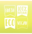 Natural and vegan flag tags vector image