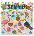summer poster of exotic tropical birds and flower vector image vector image