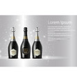 three champagne wine bottles on sparkling vector image vector image