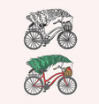 bicycle with a christmas tree spruce vector image vector image