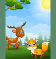 mouse deer and baby fox cartoon in the jungle vector image