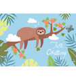 postcard with a sloth sleeping on a branch vector image