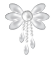 brooch vector image