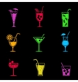 Cocktail icons set vector image vector image