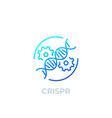 crispr genome editing icon line vector image