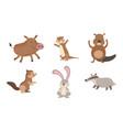 cute wild forest animals set gopher wild boar vector image vector image