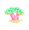 flat design of bubble coral on sandy vector image vector image