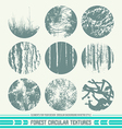 Forest circular textures vector image vector image