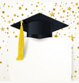 graduate cap with diploma on background of vector image vector image