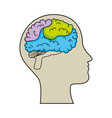 human profile with brain vector image vector image