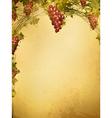 red grape vine frame vector image vector image