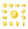 shiny golden coins isolated icons set vector image vector image