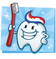 Tooth Cartoon Character vector image vector image