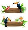 Toucan 2 Tropical Rainforest Banners vector image
