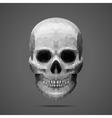 Polygonal gray skull Side light vector image