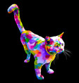 colorful cute cat looking up isolated on a black vector image